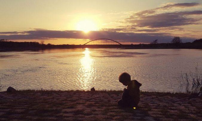 Elbufer im Sonnenuntergang