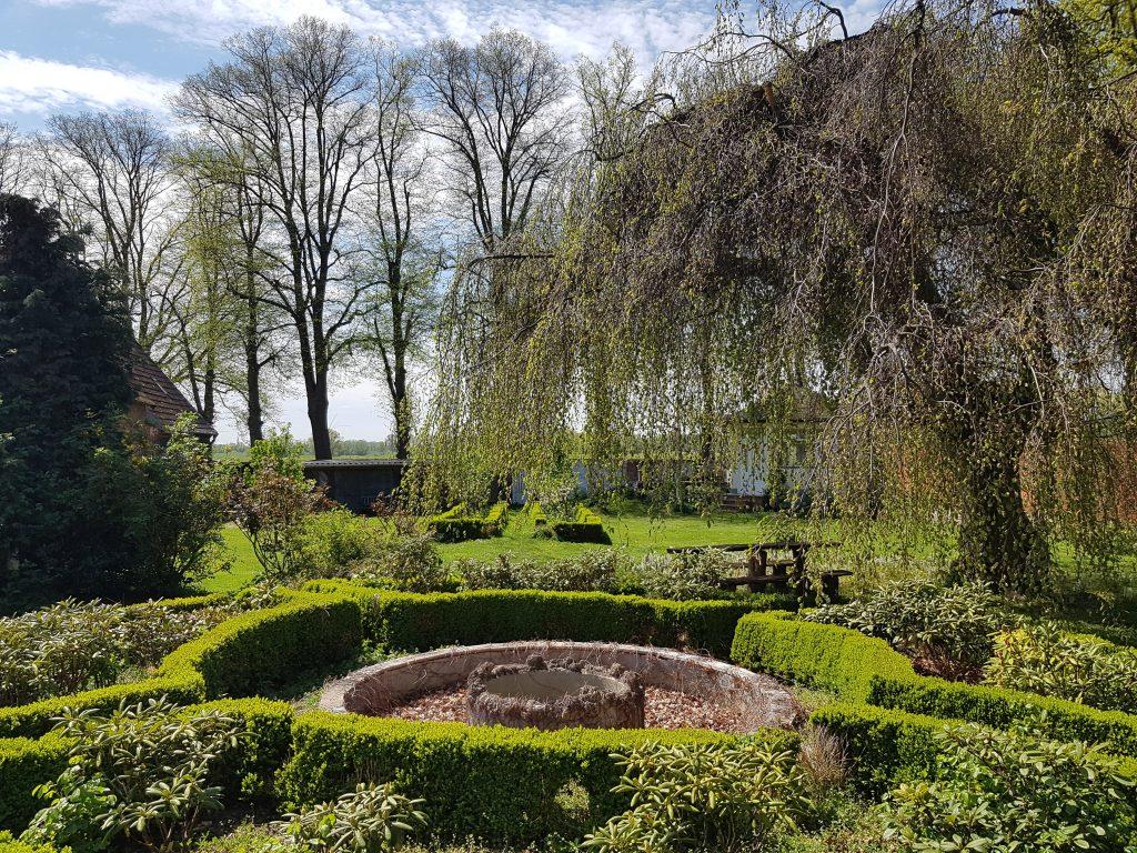 Der Garten mit Barockbuche im Frühling